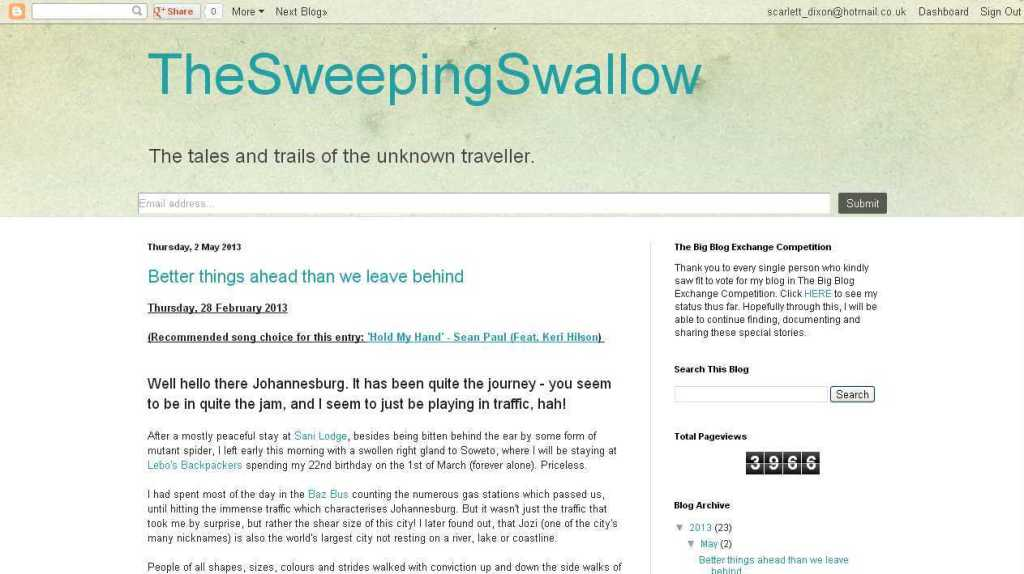 TheSweepingSwallow