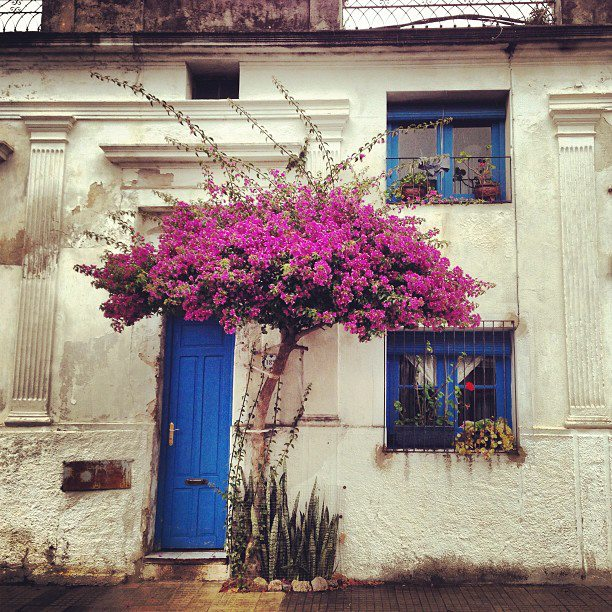 #Colonia, #Uruguay - beautiful old town...... And the most expensive place ever!