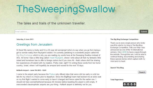 sweeping swallow