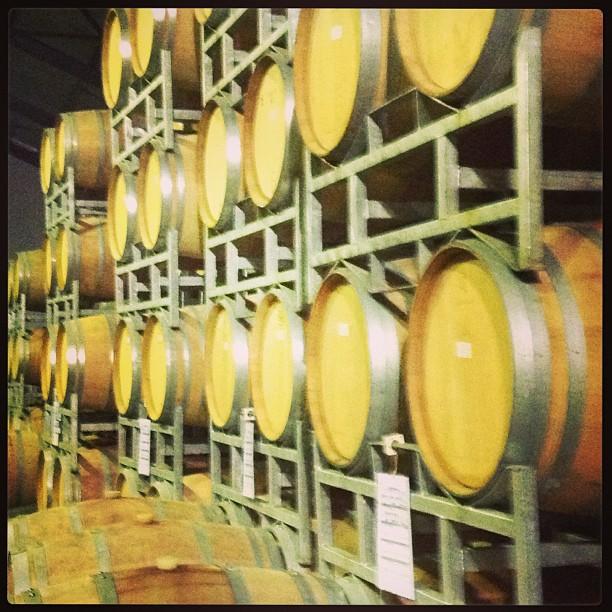 Winetasting in and around Stellenbosh