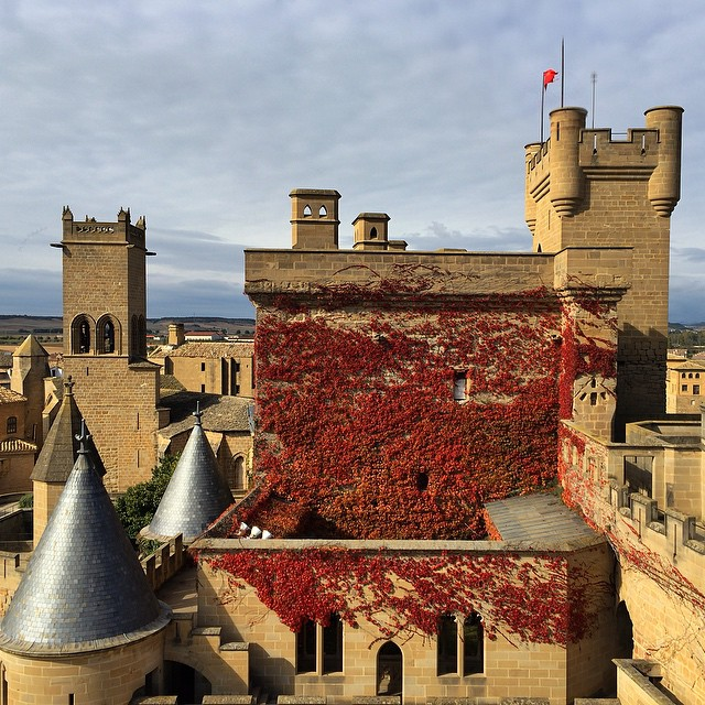 Castle Pamplona original photo