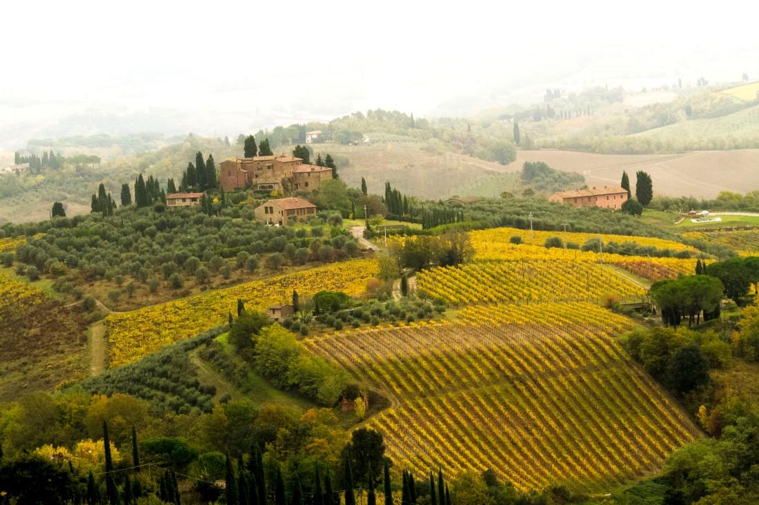 Tessa - San Gimignano, Tuscan region